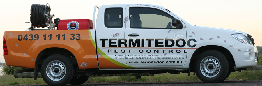 TermitedocNewTruckGraphics
